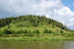 Bois sur la côte du fleuve photos stock
