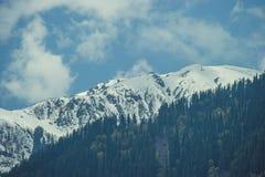 Bois vert sur les montagnes de l'Himalaya d'une neige de fond et les nuages blancs Image libre de droits