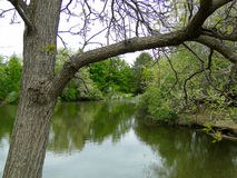 Boise City Pond Royalty Free Stock Photo
