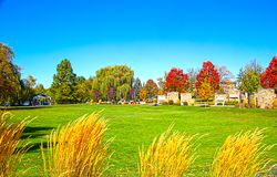 Boise Fall Colors royalty free stock images