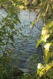 Boise-Fluss lizenzfreies stockfoto