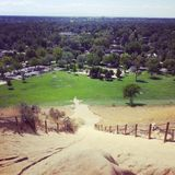 Boise het kamelen achterpark Royalty-vrije Stock Afbeelding
