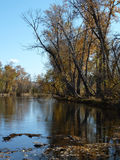Boise river. The Boise river in autumn stock photo