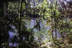 The Boise River. Runs along the Memorial park in Boise Idaho stock photos