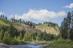 Boise River Summer Day. Clouds float in blue sky above the Boise River near Featherville, Idaho, USA stock photo