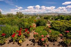 Boise Skyline y flores en un parque de la ciudad Imagen de archivo libre de regalías