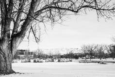 Boise Town, Idaho Lizenzfreies Stockfoto