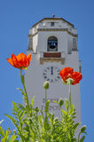 Boise Train Depot with Poppies Royalty Free Stock Images