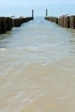 Boisez les brise-lames sur la plage à la Mer du Nord Photos stock