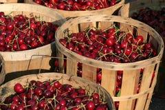 Boisseaux de cerises   Photos stock
