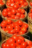 Boisseaux de tomates Images libres de droits