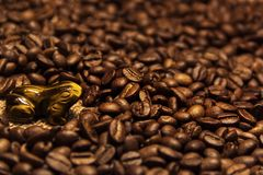 Boisson aromatique de grains de café excellente pendant le matin image stock