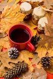 Boisson automnale avec les bonbons naturels faits maison La saison faite maison naturelle d'automne de festins maintiennent sain  image stock