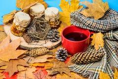 Boisson automnale avec les bonbons naturels faits maison La saison faite maison naturelle d'automne de festins maintiennent sain  images libres de droits