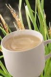 Boisson chaude de céréale Image stock