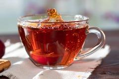 Boisson chaude Thé chaud de fruit dedans avec des prunes Images stock