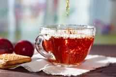 Boisson chaude Versez le thé chaud de fruit dans une tasse en verre Image libre de droits