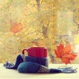 Boisson de chauffage d'automne Photographie stock libre de droits