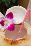 Boisson de l'eau de noix de coco. Images libres de droits