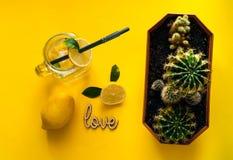 Boisson de limonade d'agrume de l'eau de seltz en verre Boisson saine et de detox de l'eau en été Humeur au néon verte sur le fon Photographie stock