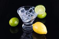 Boisson de scintillement dans un verre de martini avec des citrons et des chaux Images stock