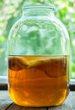 Boisson de thé fermentée par kombucha naturel saine Images libres de droits