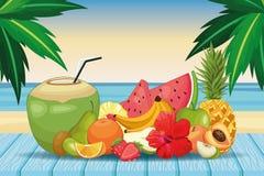 Boisson et fruit de noix de coco illustration de vecteur