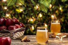 Boisson fraîche de cidre avec des pommes dans le jardin Images stock