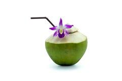 Boisson fraîche de l'eau de noix de coco Photo stock