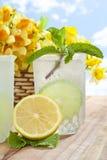boisson froide Photographie stock libre de droits