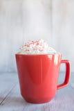 Boisson froide de chocolat chaud d'hiver avec la crème fouettée Photo libre de droits