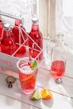 Boisson rouge d'été dans la bouteille avec la feuille en bon état photos stock