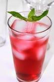 Boisson rouge régénératrice de cocktail Photographie stock