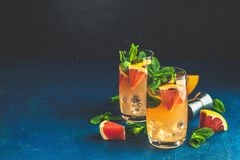 Boisson tonique de pamplemousse et de genièvre en bon état image libre de droits