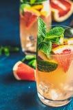 Boisson tonique de pamplemousse et de genièvre en bon état photo stock