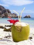 Boisson tropicale de noix de coco à la plage sur l'île de Digue de La Photos libres de droits