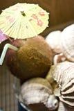 Boisson tropicale de noix de coco Photo libre de droits