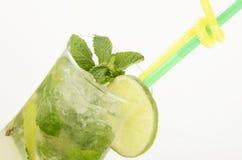 Boissons alcoolis?es avec des morceaux de fruit photos stock