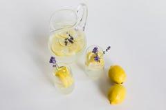 Boissons faites maison fraîches avec des morceaux de citron et fleurs de lavande en verres d'isolement sur le blanc Image libre de droits