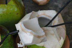 Boissons prêtes de noix de coco avec des pailles à l'intérieur de lui photos stock