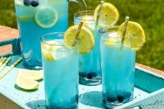 Boissons régénératrices d'été de limonade de myrtille Photographie stock libre de droits