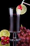 boit l'expert en logiciel organique de jus de santé de fruits frais Photographie stock