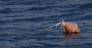 Boja unosi się na morzu zbiory wideo
