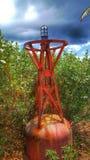 Boje auf schiffbrüchigem Cay Lizenzfreie Stockfotos