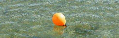 Boje, die in das klare Wasser schwimmt Stockfotografie