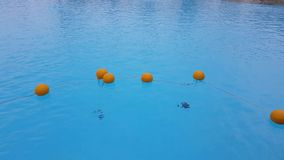 Bojen im Pool stock video footage