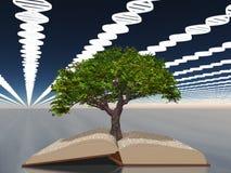 Bok av liv med trädet av liv vektor illustrationer