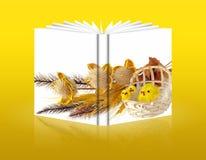 Bok av påskgarneringar Arkivbild