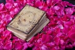 Bok av rosor Arkivfoton