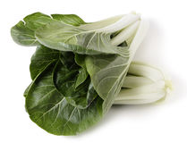 Bok choi high angle Stock Photos